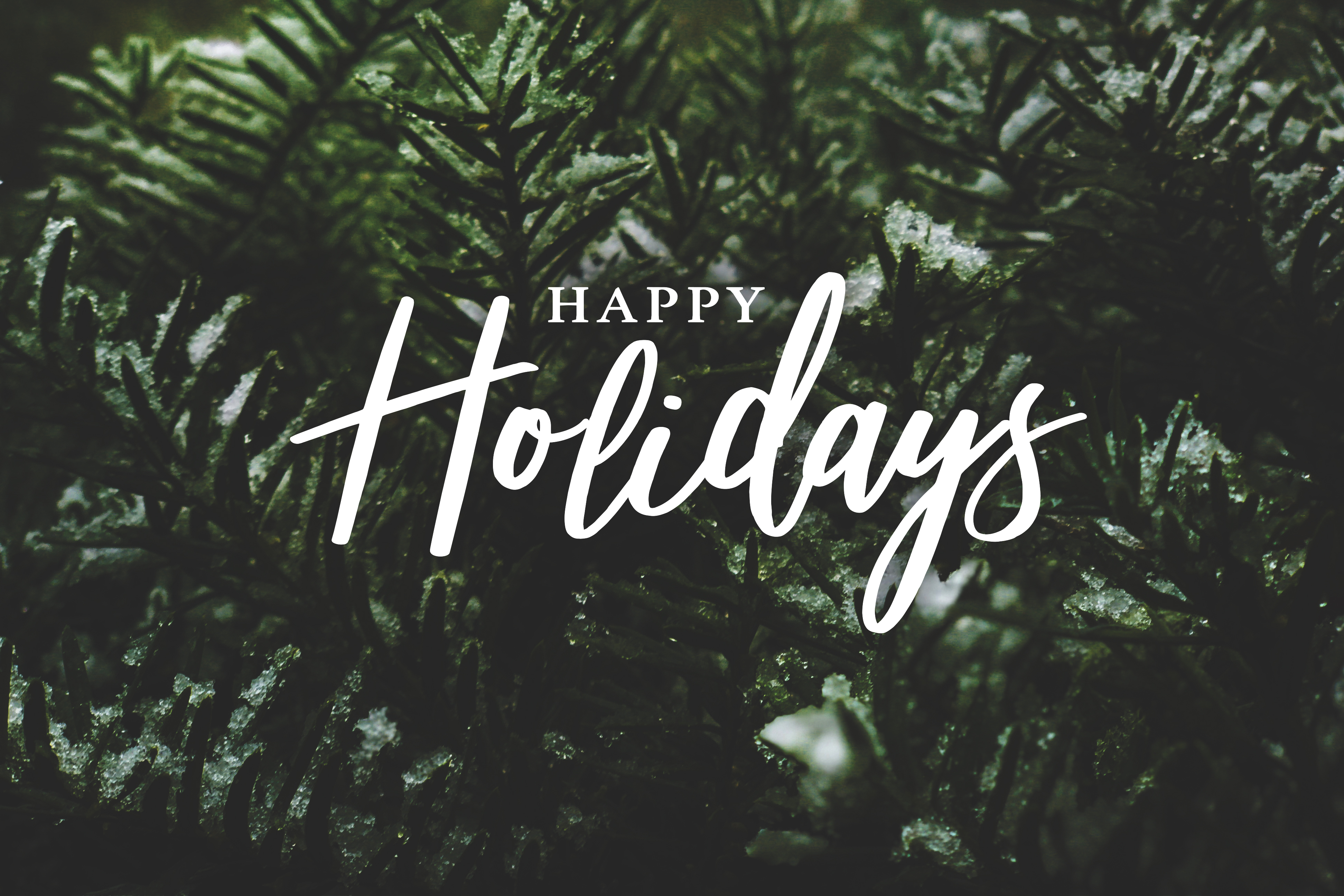Happy Holidays from the National NewsMedia Council of Canada